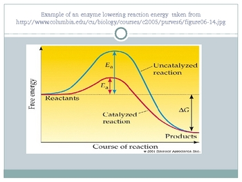 Energy and Chemical Reactions Powerpoint