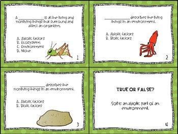 Energy and Ecosystems Task Cards