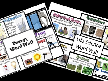 Energy and Life Science Word Wall
