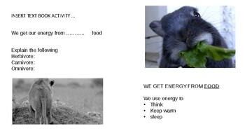 Energy and energy transfer