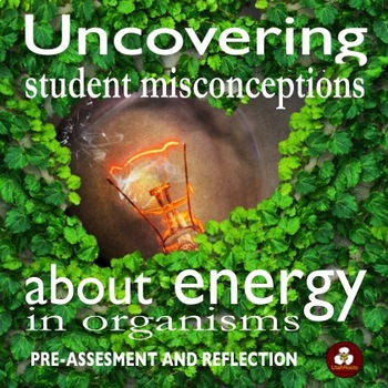 Energy in Organisms Unit Pre-Assessment and Reflection Activity