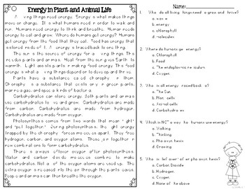 Energy in Plants and Animals Differentiated Nonfiction Reading Passages