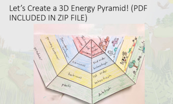 Energy Ecosystems PowerPoint (Food Chains, webs,and 3D Energy Pyramid Template)