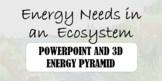 Energy Ecosystems PowerPoint (Food Chains, webs,and 3D Ene