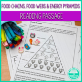 Food Chains, Food Webs, and Energy Pyramids: Reading Passage and Worksheets