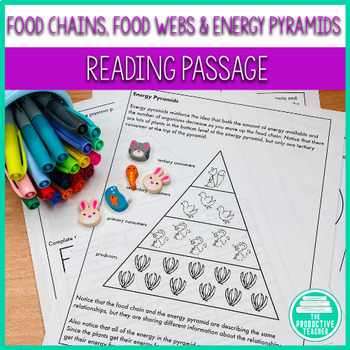 Food Chains Food Webs And Energy Pyramids Reading Passage And Worksheets