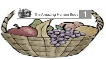 Engage NY 2nd Grade Module 10 - The Human Body BUNDLE