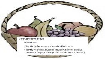 Engage NY 2nd Grade Module 10 - The Human Body BUNDLE