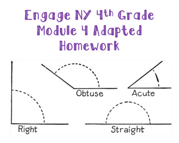 Engage NY 4th Grade Module 4 Adapted Homework