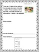 Engage NY/Eureka Math Application Problems: Grade 3, Module 2, with pictures!
