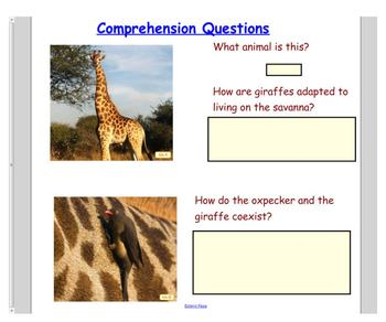 Engage NY First Grade Domain 8 Animals and Habitats Lessons 2, 3, & 4