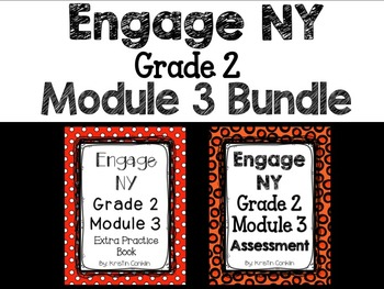 Engage NY Grade 2 Module 3 BUNDLE