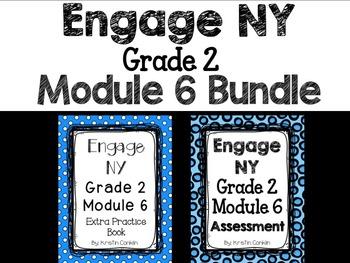 Engage NY Grade 2 Module 6 BUNDLE