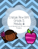 Engage NY Grade 2 Module 6 Supplemental Practice Pages