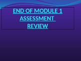 Engage NY MATH 5th Grade Module 1 END ASSESSMENT (PowerPoint)