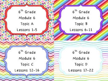 Engage NY Math 6, Module 6 MEGA Bundle