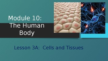 Engage NY:  Module 10 - The Human Body - Lesson 3A:  Cells and Tissues