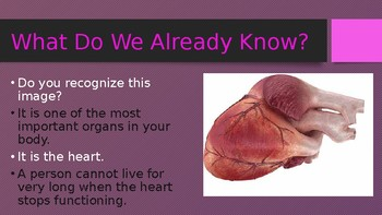 Engage NY:  Module 10 - The Human Body - Lesson 4A:  Organs