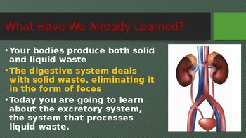 Engage NY:  Module 10 - The Human Body - Lesson 6A:  The Excretory System