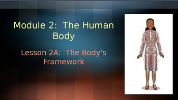 Engage NY:  Module 2 - Lesson 2A:  The Body's Framework
