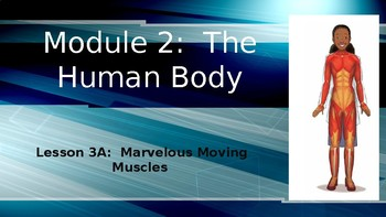 Engage NY:  Module 2 - Lesson 3A:  Marvelous Moving Muscles