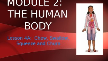 Engage NY:  Module 2:  Lesson 4A - Chew, Swallow, Squeeze and Churn
