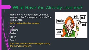 Engage NY:  Module 2 - Lesson 6A:  Control Center - The Brain