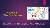 Engage NY:  Module 2 - The Five Senses:  Lesson 1A:  My Senses are Amazing