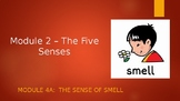 Engage NY - Module 2:  The Five Senses - Lesson 4A:  The Sense of Smell