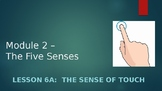 Engage NY:  Module 2 - The Five Senses:  Lesson 6A:  The Sense of Touch