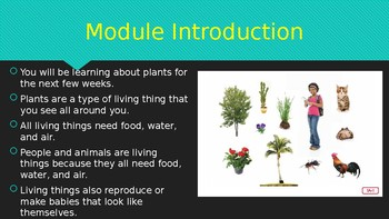 Engage NY:  Module 4 - Plants:  Lesson 1A - Introduction to Plants