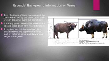 Engage NY:  Module 7 - Lesson 9:  The Buffalo Hunters