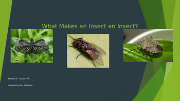 Engage NY:  Module 8:  Lesson 2 - What Makes An Insect an Insect?