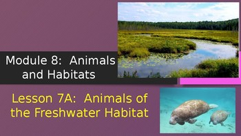 Engage NY:  Module 8:  Lesson 7A - Animals of the Freshwater Habitat