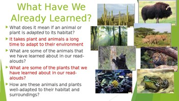 Engage NY:  Module 8:  Lesson 9A - Habitat Destruction and Endangered Species