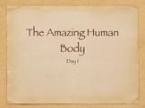 Engage NY The Human Body Day 1