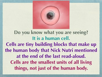 Engage NY The Human Body Day 3
