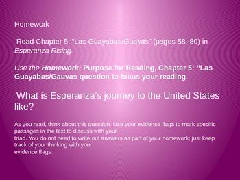 Engage NY Unit 2 Lesson 4 of Esperanza Rising