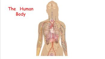 Engage NY grade 1 Domain 2 The Human Body