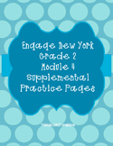 Eureka Math/Engage NY Supplemental Practice Pages Grade 2 Module 4