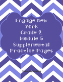 Eureka/Engage NY Grade 2 Module 5 Supplemental Practice Pages