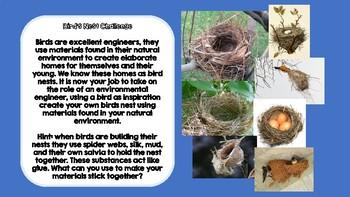 Engineer A Bird's Nest (STEM CHALLENGE, K-8, Maker Space)
