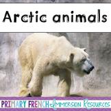 English Arctic Animals - Flashcards, Word wall words, BANG game cards