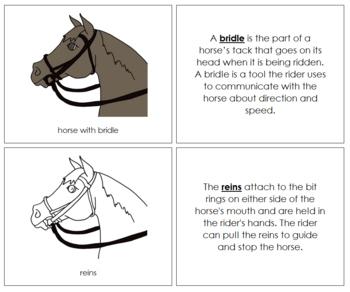 English Bridle Nomenclature Book