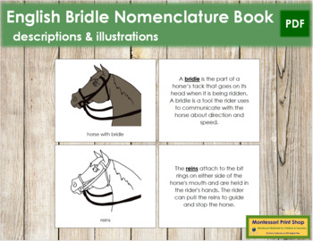 English Bridle Nomenclature Book
