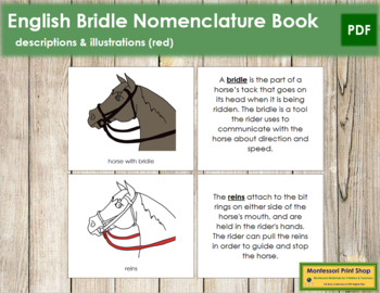English Bridle Nomenclature Book (Red)