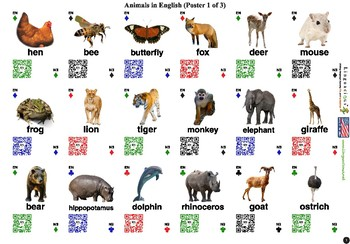 English/ESL Animals (54 animals with spelling and audio)