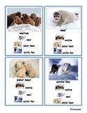 English Game: Quartet - Arctic Animals