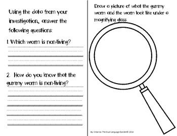Interactive Science Journals for Kindergarten/1st: Insects,Plants & more!