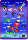 English Minibeasts  Poster . A3